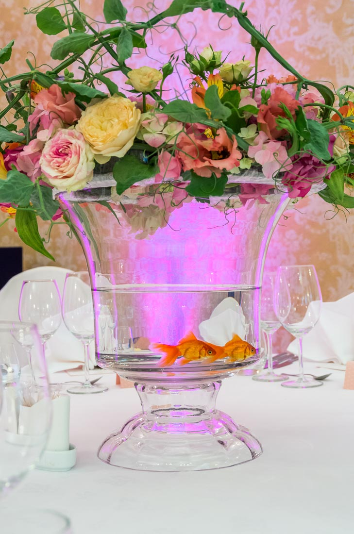 goldfish-themed-wedding-16